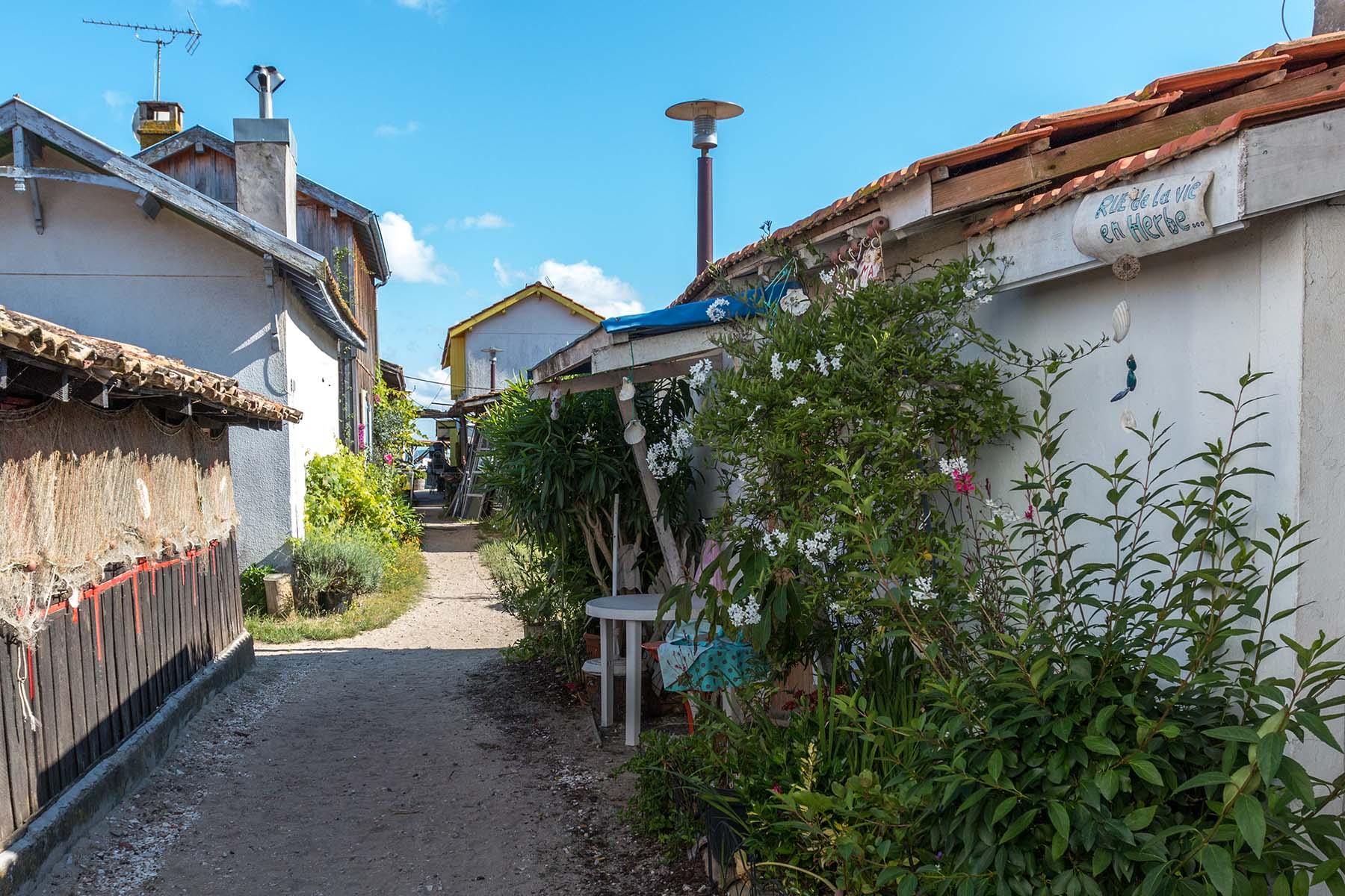 village-ostreicole (1)