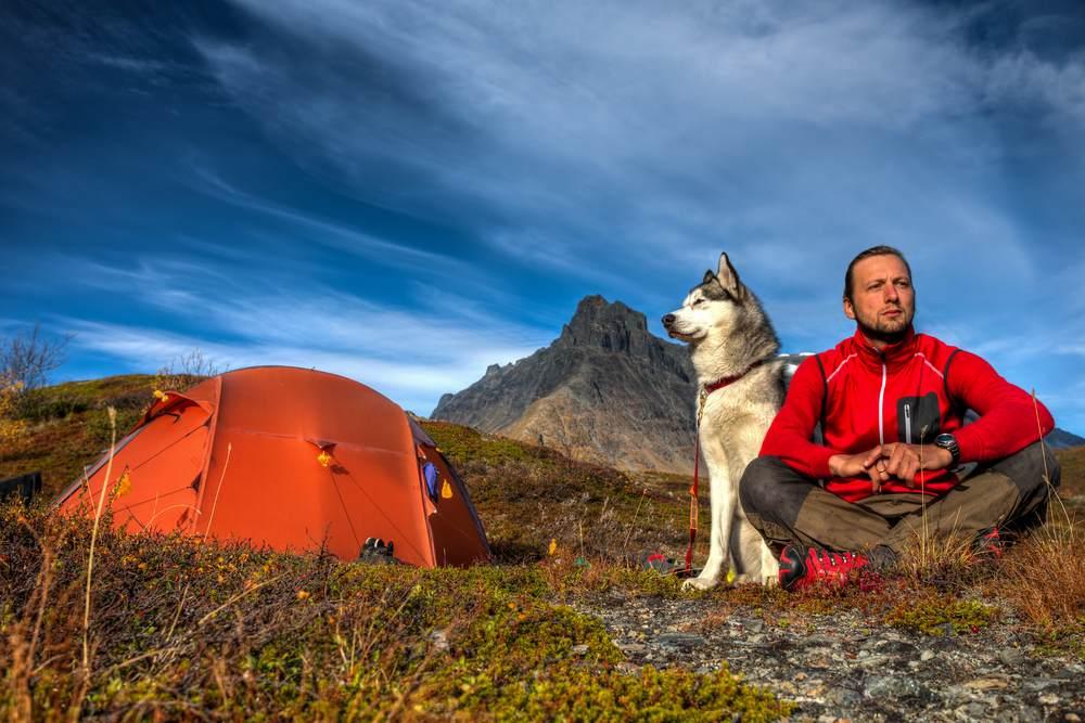 Quels sont les campings acceptant les animaux-1