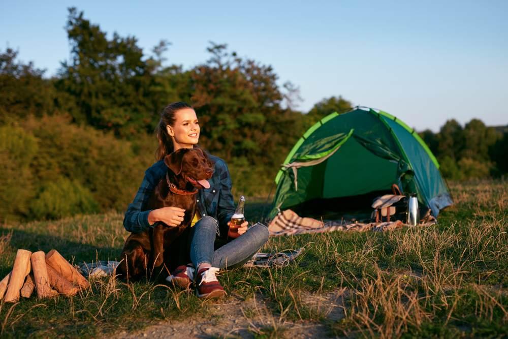 Quels sont les campings acceptant les animaux-2