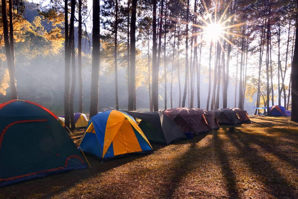 Quels sont les campings les plus originaux en France ?-1