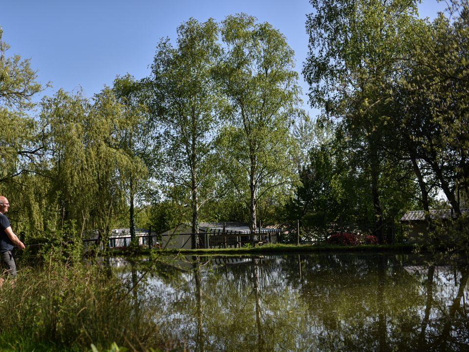 Camping Domaine de Bellevue - Camping Paradis, 3* - 41