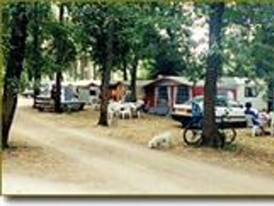 Camping Les Chênes Verts - Camping Charente-Maritime
