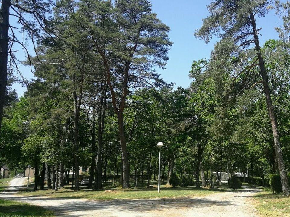 Camping Municipal (l.V.T.) - Camping Correze