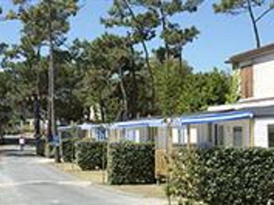 Camping Les Pins - Camping Charente-Maritime