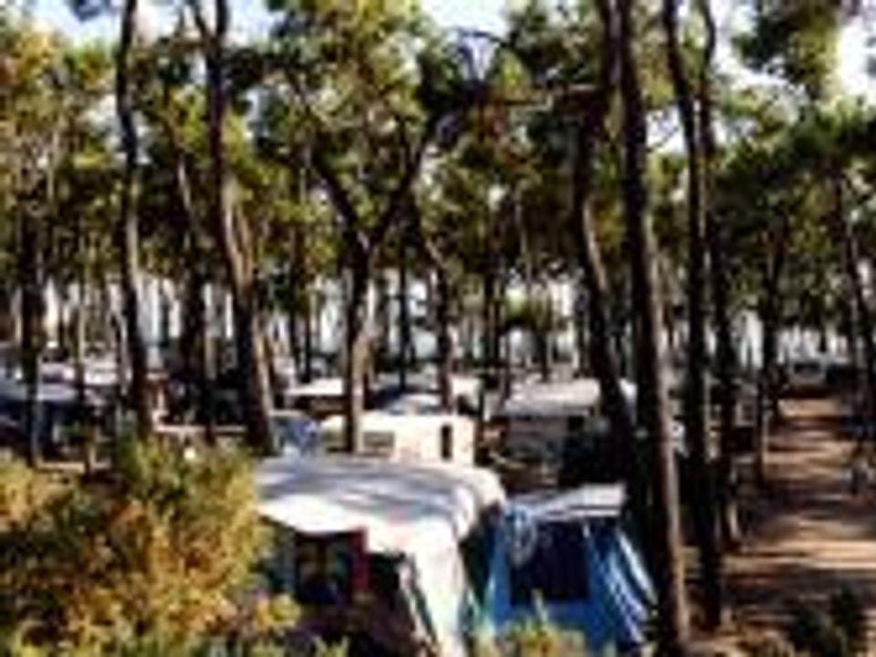 Camping G.C.U. La Pointe Du Rocher - Camping Vendée