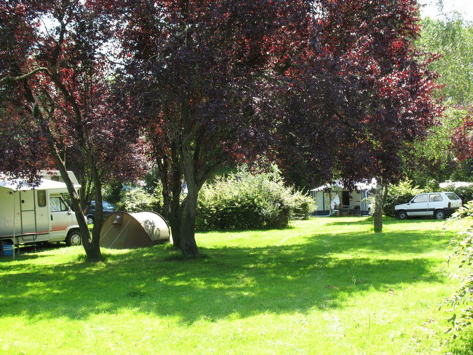 Camping Municipal Du Port - Camping Maine-et-Loire