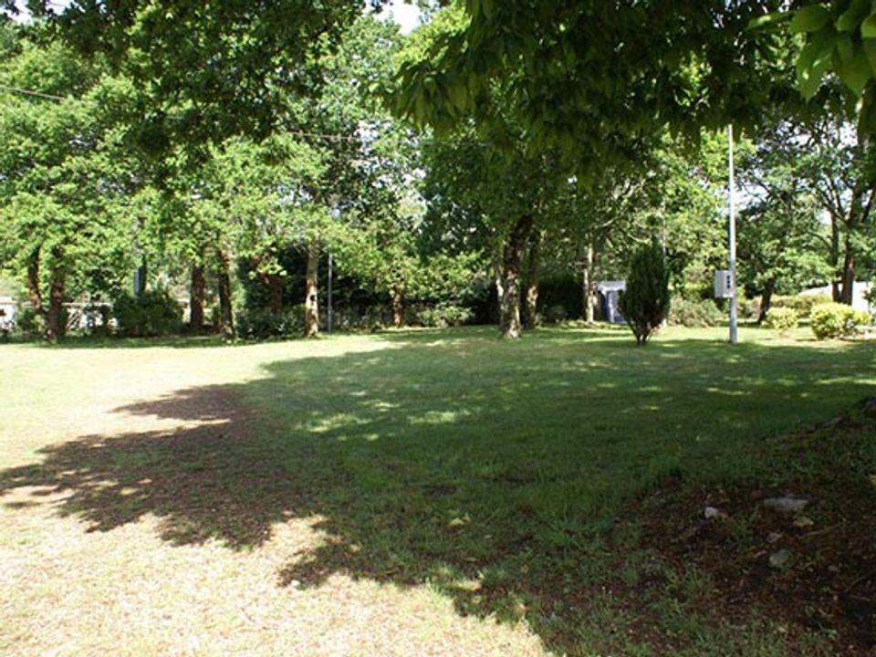 Camping C.C.D.F. Les Ajoncs - Camping