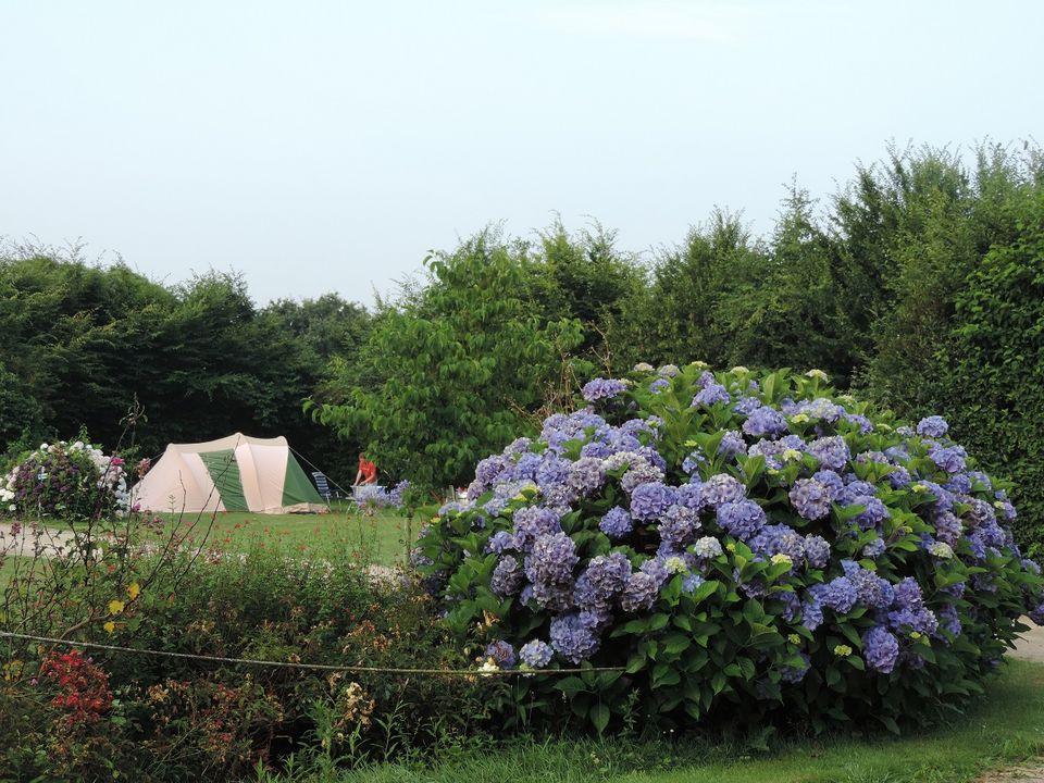 Camping à la ferme de Penguilly - Camping Finistère