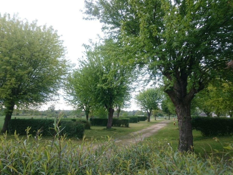 Camping De L'ile Saint-Martin - Camping Yonne