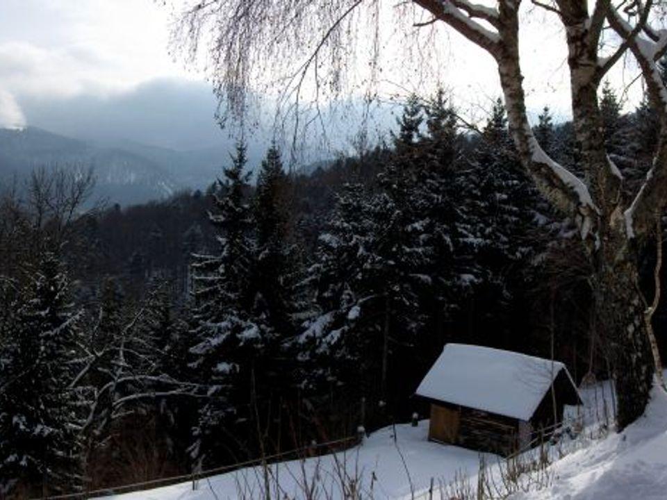 Camping Im Berg - Camping Haut-Rhin