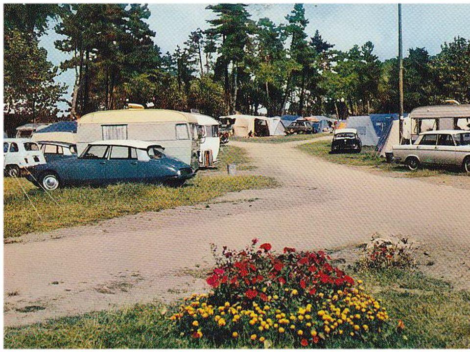 Camping Du Docteur Lemonnier - Camping Manche