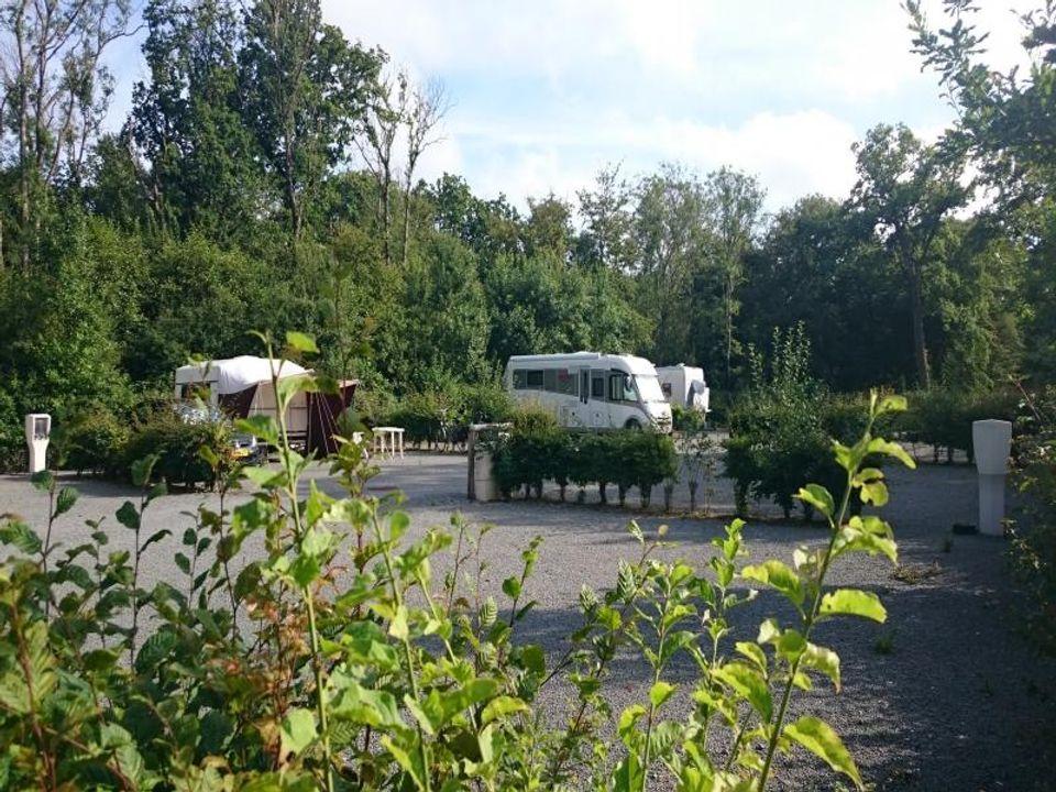 Camping Municipal Les Sapins - Camping Pas-de-Calais
