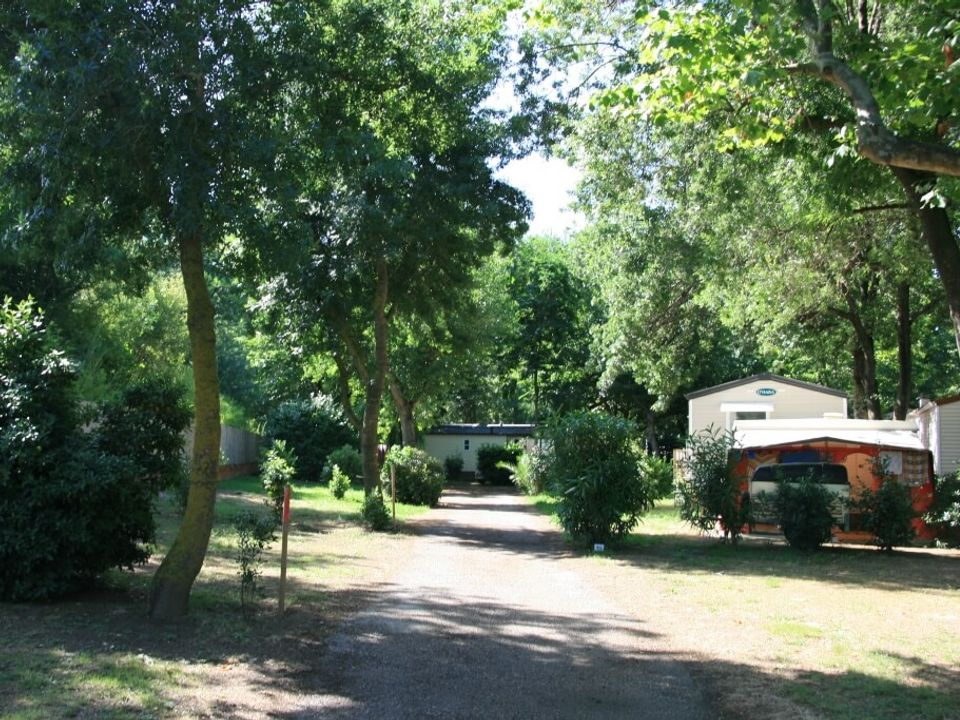 Camping Albizia - Camping Pyrenees-Orientales