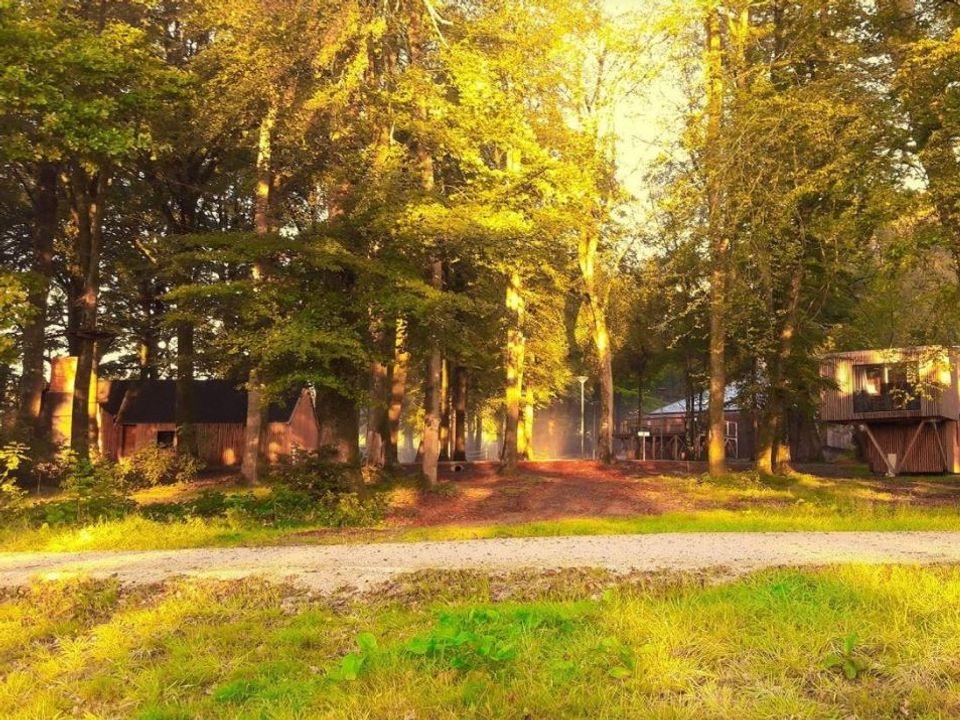 Camping L'Etape en Forêt - Camping Calvados