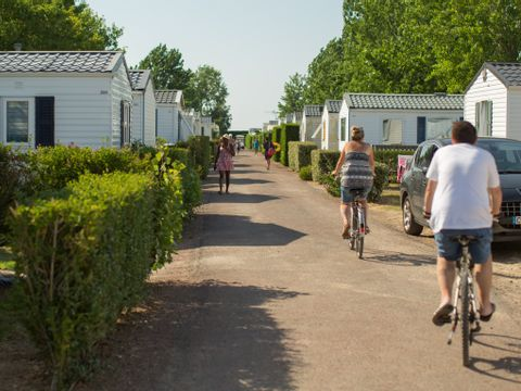 Camping Les Blancs Chênes  - Camping Vendée - Image N°16