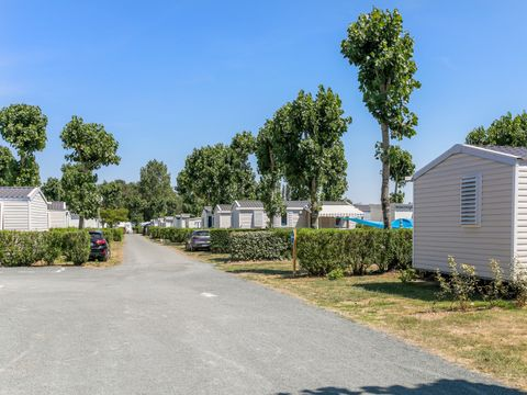 Camping L'Atlantique - Camping Vendée - Image N°20