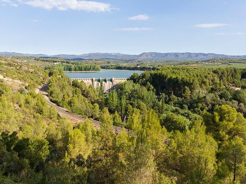 Camping Altomira  - Camping Castellón - Image N°17