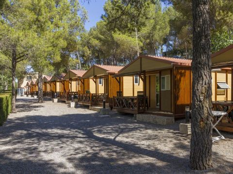Camping Altomira  - Camping Castellón - Image N°10