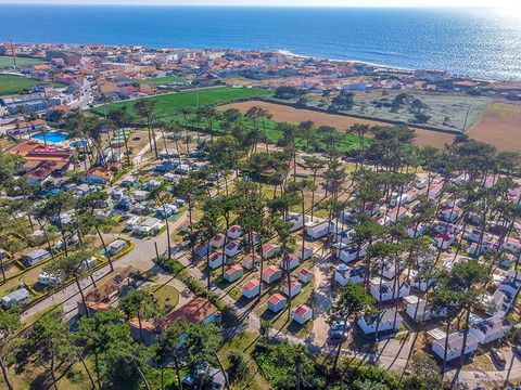 Camping Angeiras - Camping Nord du Portugal - Image N°32