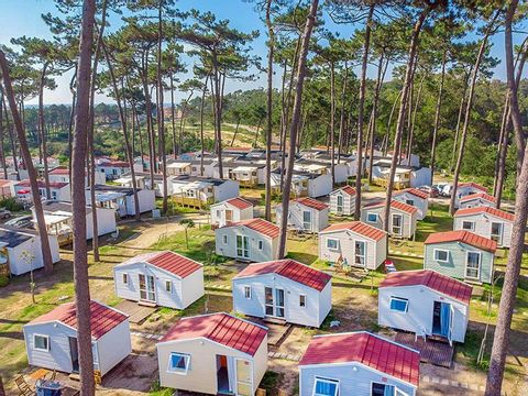 Camping Angeiras - Camping Nord du Portugal - Image N°13