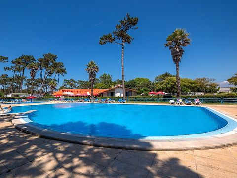 Camping Angeiras - Camping Nord du Portugal - Image N°3