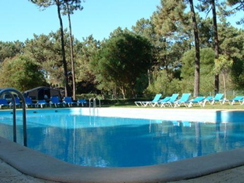 Camping Viana do Castelo  - Camping Nord du Portugal - Image N°2