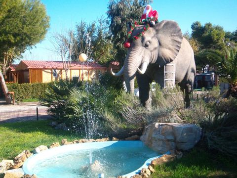 Camping L'Alqueria - Camping Valence - Image N°10