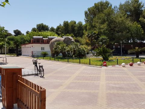 Camping L'Alqueria - Camping Valence - Image N°28