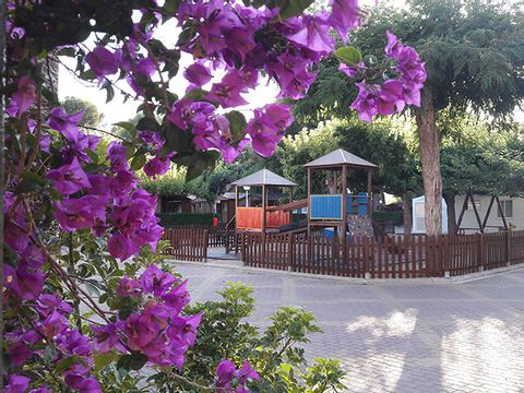 Camping L'Alqueria - Camping Valence - Image N°13