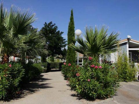 Camping Le Hameau des Cannisses  - Camping Aude - Image N°16