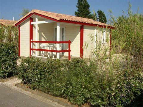 Camping Le Hameau des Cannisses  - Camping Aude - Image N°23