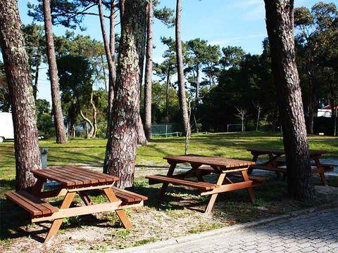 Camping Caminha - Camping Nord du Portugal - Image N°11