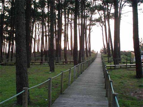 Camping Caminha - Camping Nord du Portugal - Image N°7
