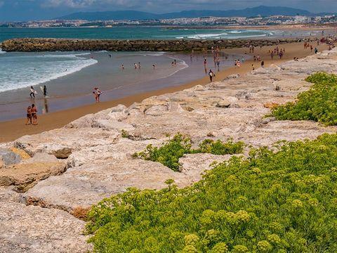 Camping Costa de Caparica - Camping Région de Lisbonne - Portugal - Image N°21