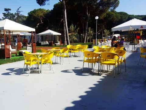 Camping Costa de Caparica - Camping Région de Lisbonne - Portugal - Image N°14