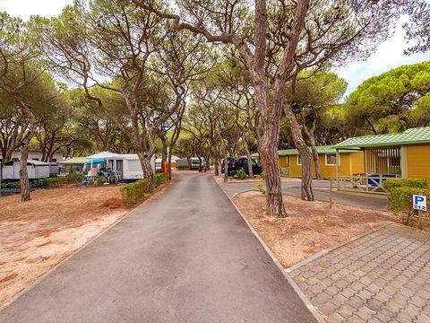 Camping Costa de Caparica - Camping Région de Lisbonne - Portugal - Image N°8