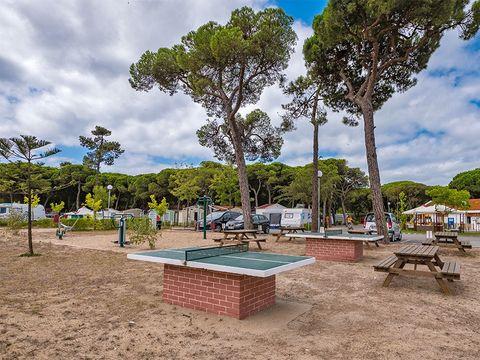 Camping Costa de Caparica - Camping Région de Lisbonne - Portugal - Image N°4
