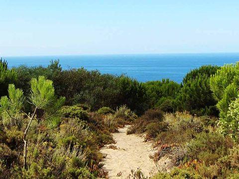Camping Costa de Caparica - Camping Région de Lisbonne - Portugal - Image N°17