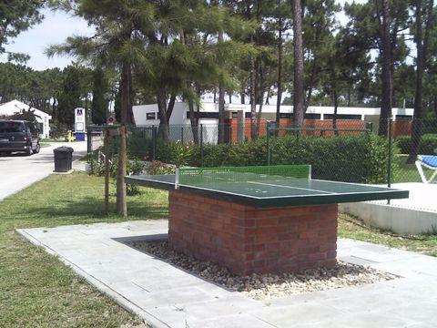 Camping Gala - Camping Centre du Portugal - Image N°9