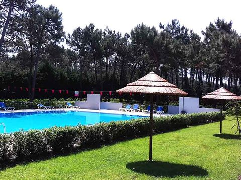 Camping Gala - Camping Centre du Portugal - Image N°4