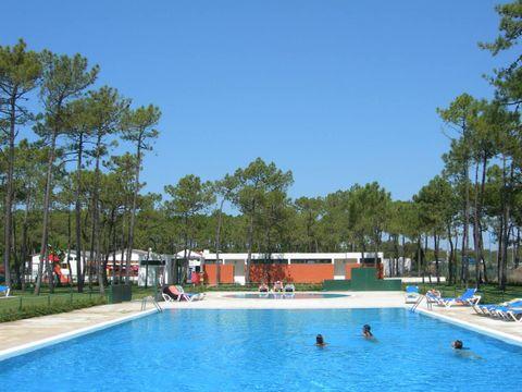 Camping Gala - Camping Centre du Portugal - Image N°3