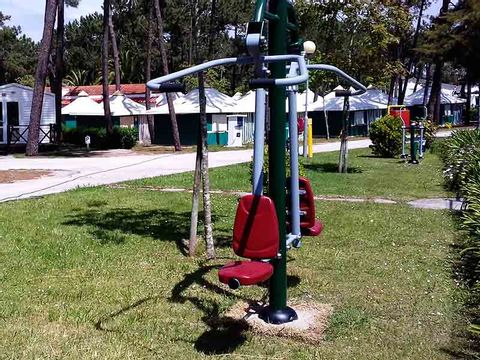 Camping Gala - Camping Centre du Portugal - Image N°7