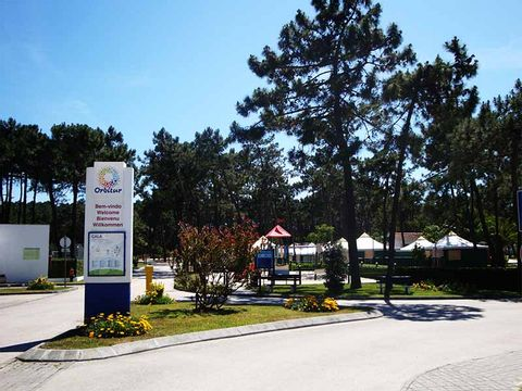 Camping Gala - Camping Centre du Portugal - Image N°5