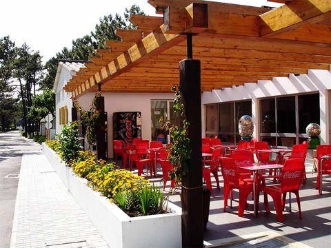 Camping Gala - Camping Centre du Portugal - Image N°12