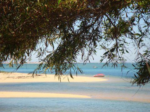 Camping Ilha de Armona - Camping Algarve - Portugal - Image N°6
