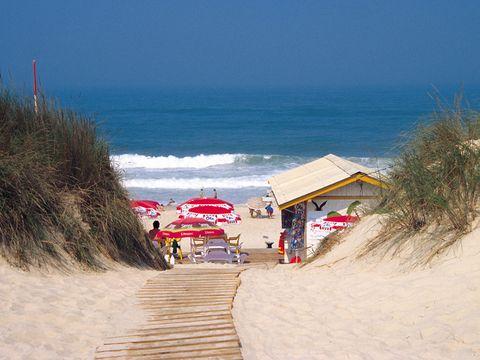 Camping Mira - Camping Centre du Portugal - Image N°15