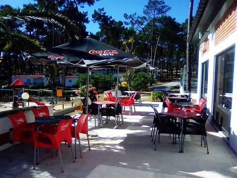 Camping Valado - Camping Région de Lisbonne - Portugal - Image N°15