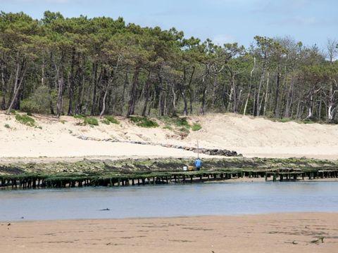 Camping Sea Green Le Paradis - Camping Vendée - Image N°24