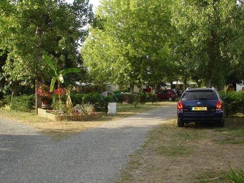 Camping  L'Estival - Camping Landes - Image N°8