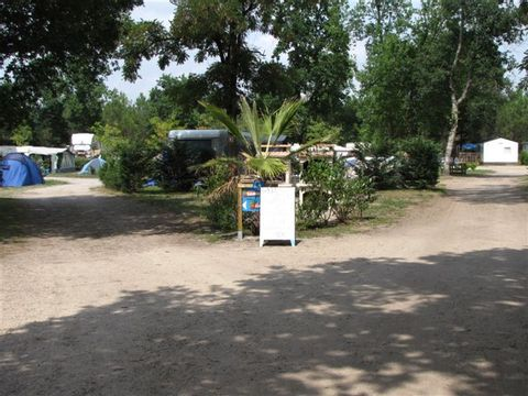 Camping Lou Payou - Camping Landes - Image N°6